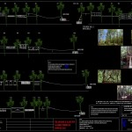 Forest Course Details